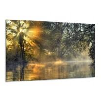 Glas schilderij Natuur | Grijs, Wit | 120x70cm 1Luik