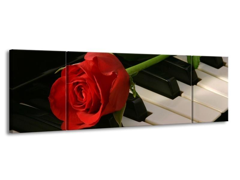 Glas schilderij Roos | Rood, Rood, Zwart | 170x50cm 3Luik