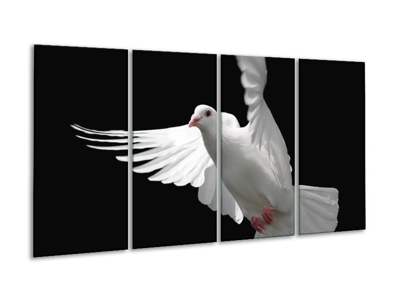 Canvas schilderij Vogel   Wit, Zwart, Grijs   160x80cm 4Luik