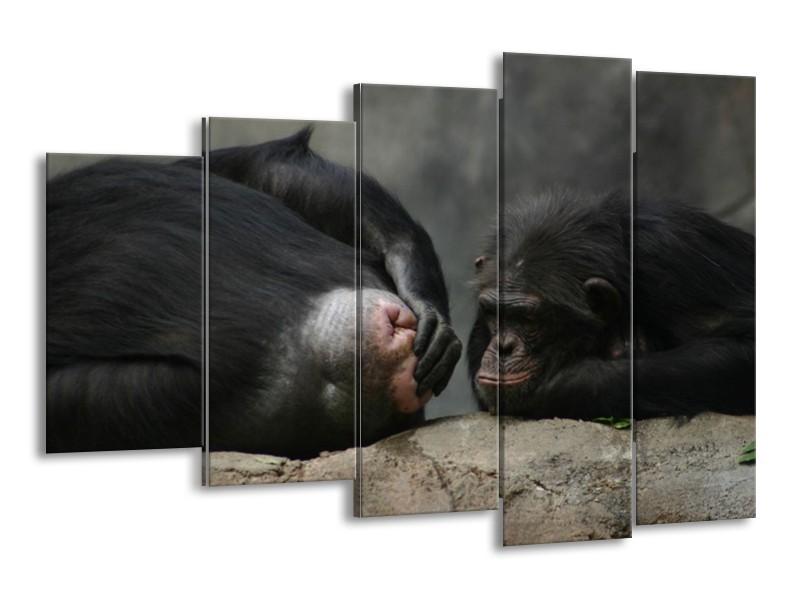 Canvas schilderij Apen | Zwart, Grijs | 150x100cm 5Luik