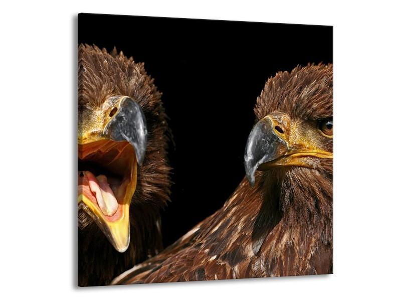 Glas schilderij Vogels | Geel, Bruin, Zwart | 50x50cm 1Luik