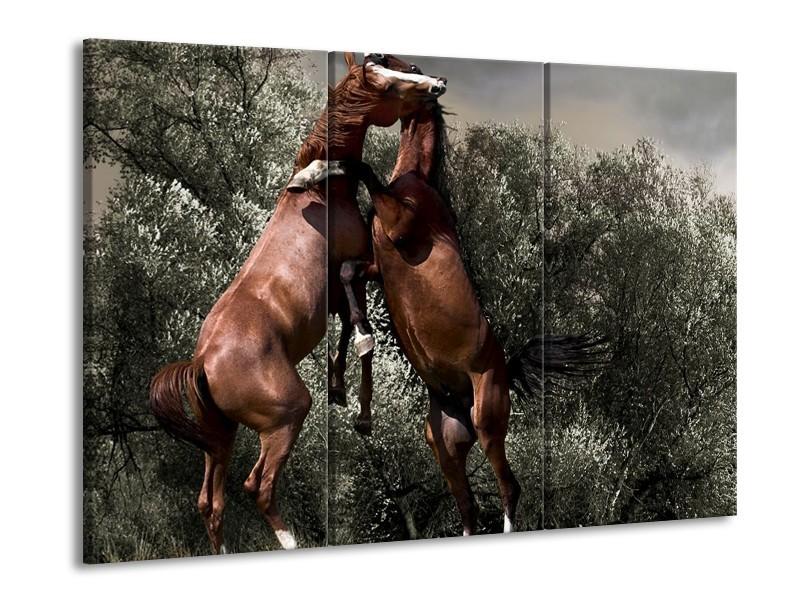 Canvas schilderij Paarden   Bruin, Grijs   90x60cm 3Luik