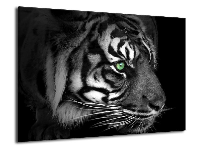 Glas schilderij Tijger | Wit, Zwart, Grijs | 70x50cm 1Luik