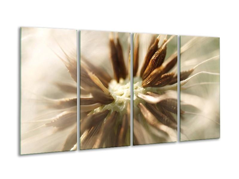 Glas schilderij Bloem   Bruin, Wit, Grijs   160x80cm 4Luik