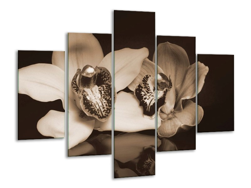 Canvas schilderij Orchidee   Sepia, Bruin   100x70cm 5Luik