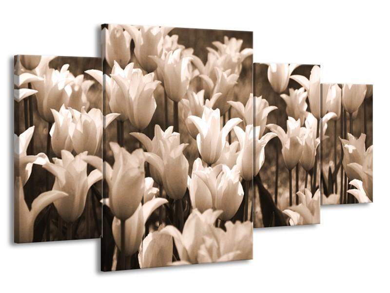 Canvas schilderij Tulpen   Sepia, Bruin   160x90cm 4Luik