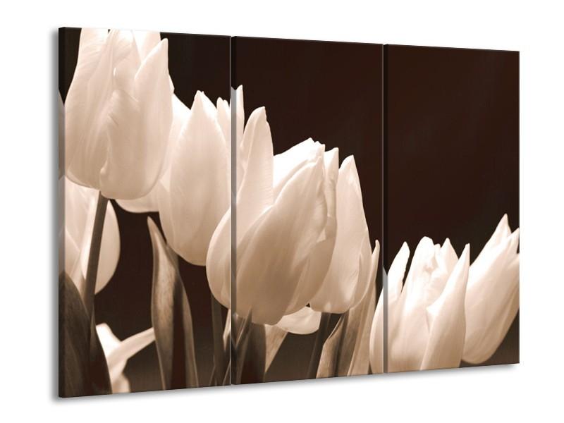 Glas schilderij Tulp | Sepia | 90x60cm 3Luik