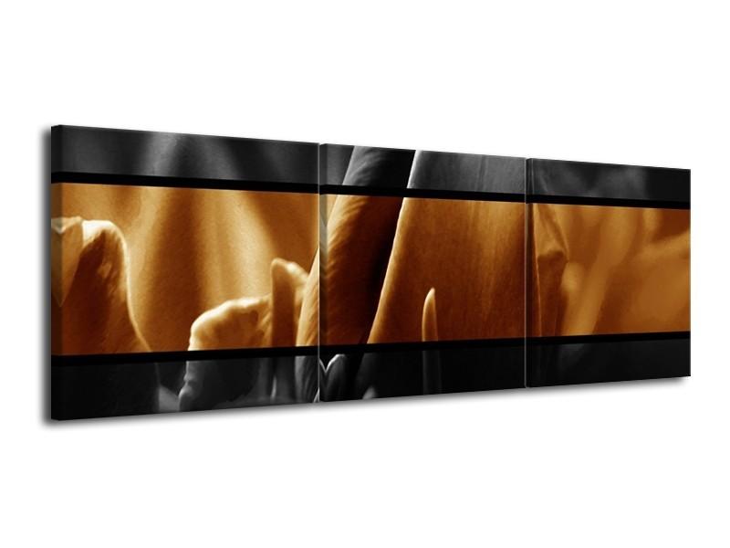 Canvas schilderij Tulpen   Sepia, Bruin   120x40cm 3Luik