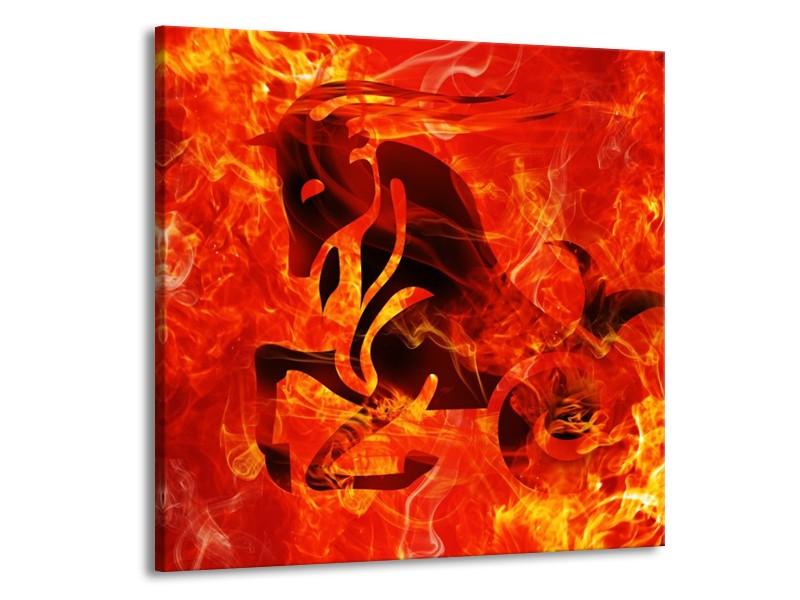 Glas schilderij Paard   Zwart, Oranje, Geel   70x70cm 1Luik