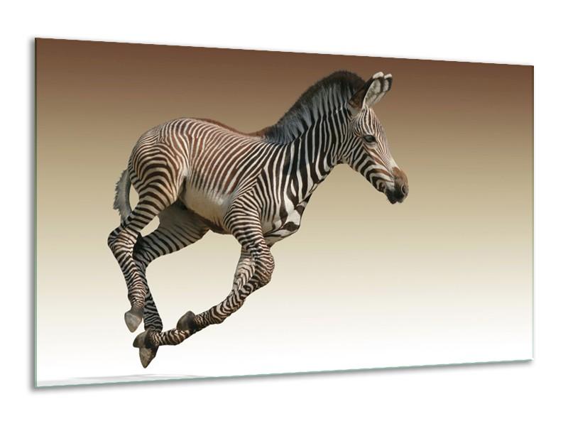 Glas schilderij Zebra | Zwart, Wit, Bruin | 120x70cm 1Luik