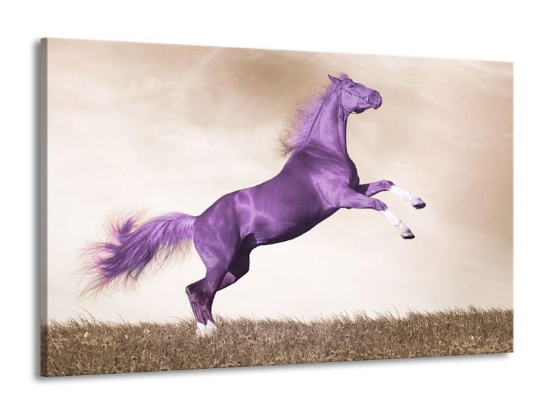 Canvas schilderij Paard | Paars, Sepia | 140x90cm 1Luik