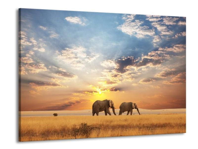 Canvas schilderij Olifant | Grijs, Geel, Blauw | 100x70cm 1Luik