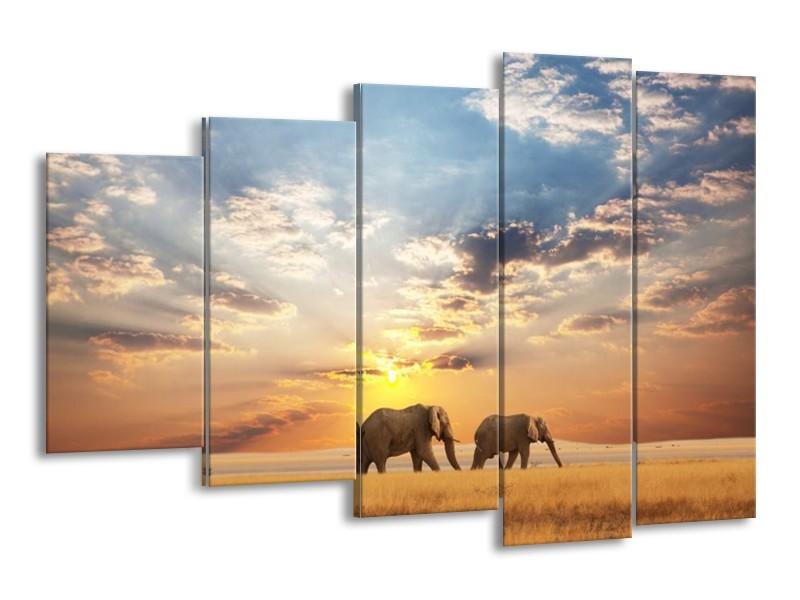 Glas schilderij Olifant | Grijs, Geel, Blauw | 150x100cm 5Luik