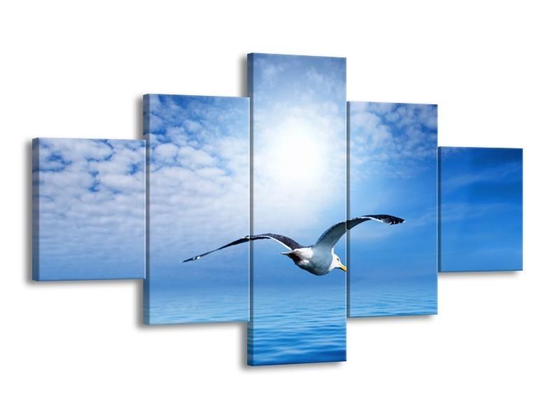 Canvas schilderij Vogel   Wit, Blauw   125x70cm 5Luik