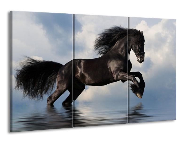 Canvas schilderij Paard   Zwart, Blauw, Wit   165x100cm 3Luik
