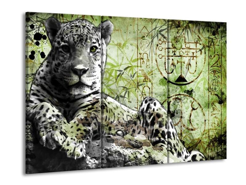 Glas schilderij Dieren | Groen, Zwart, Wit | 90x60cm 3Luik