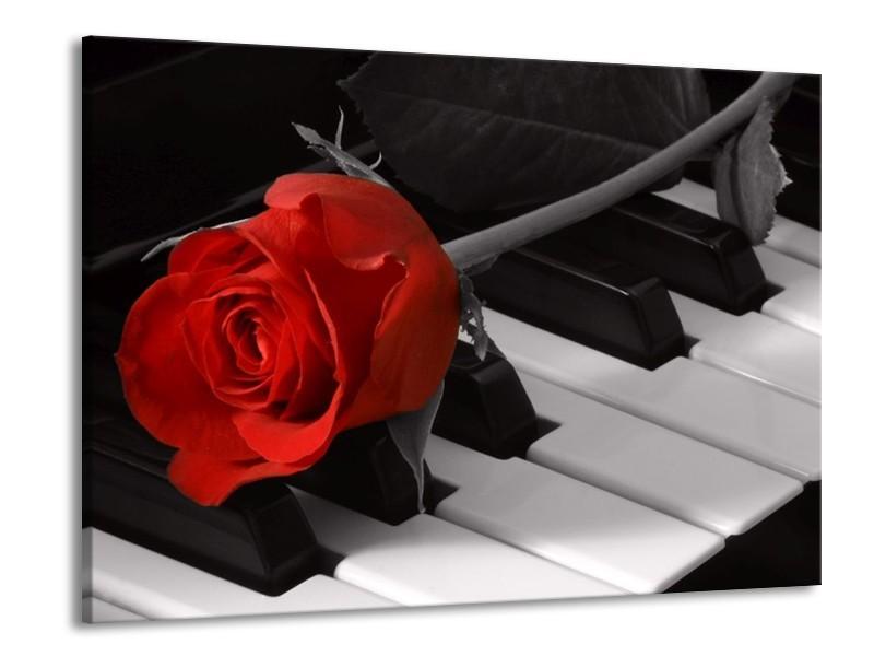 Glas schilderij Roos | Rood, Wit, Zwart | 100x70cm 1Luik