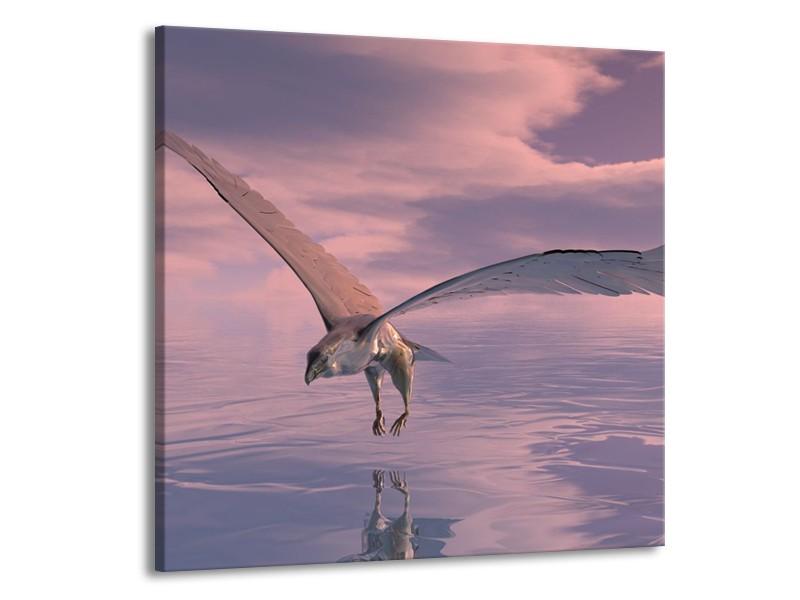 Canvas schilderij Vogel   Grijs, Wit   50x50cm 1Luik