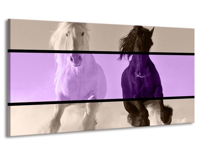 Canvas schilderij Paard   Paars, Zwart, Grijs   170x90cm 1Luik