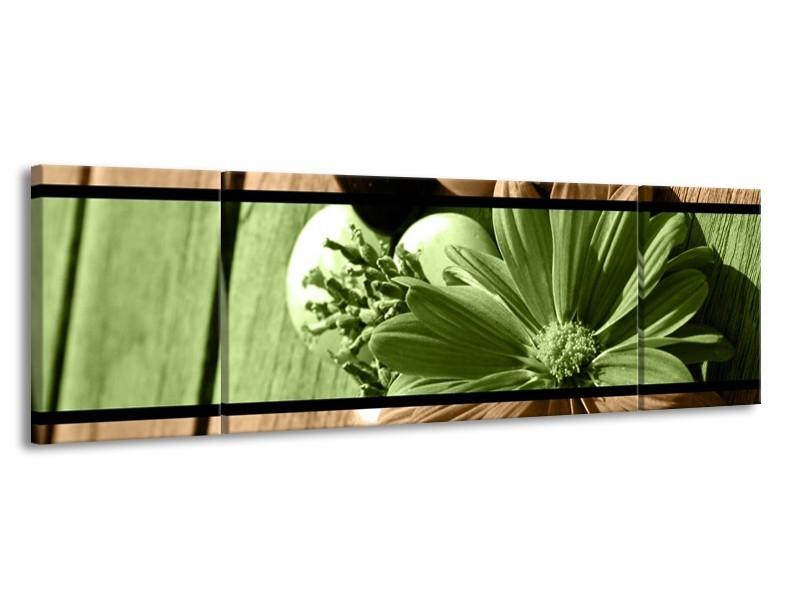 Glas schilderij Bloem   Groen, Bruin   170x50cm 3Luik