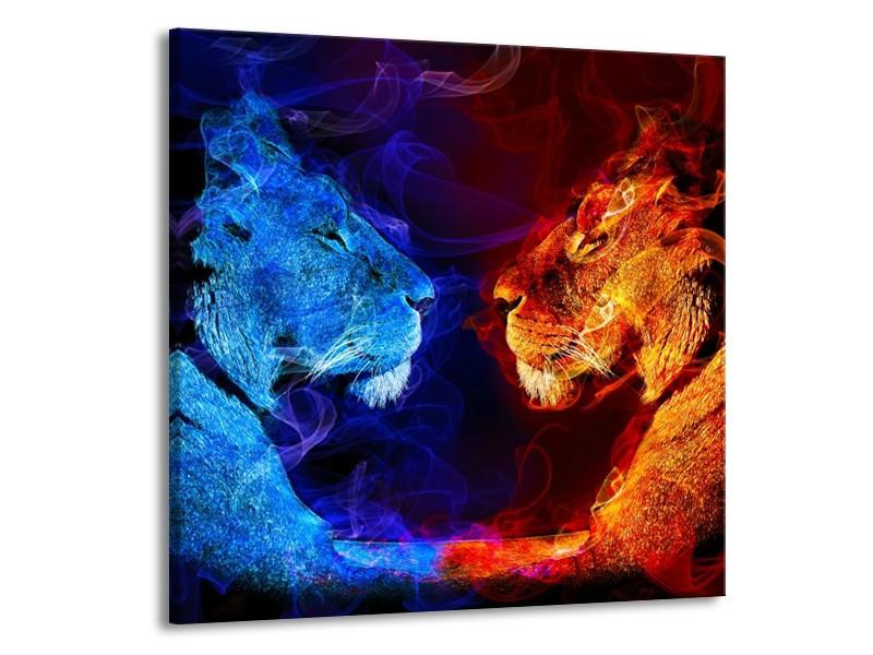 Glas schilderij Leeuw   Rood, Blauw, Rood   70x70cm 1Luik