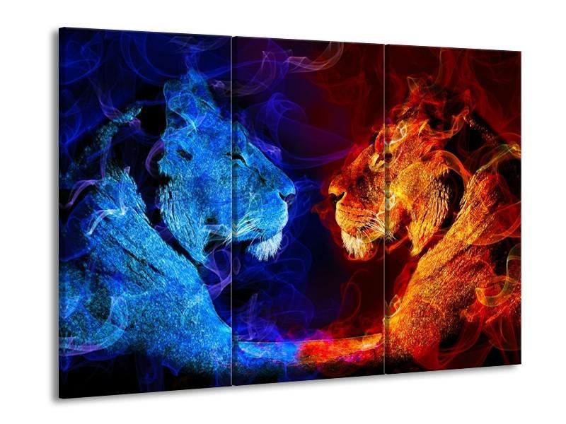 Canvas schilderij Leeuw | Rood, Blauw, Rood | 90x60cm 3Luik