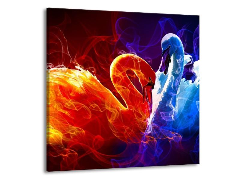 Glas schilderij Zwanen   Rood, Blauw, Rood   70x70cm 1Luik