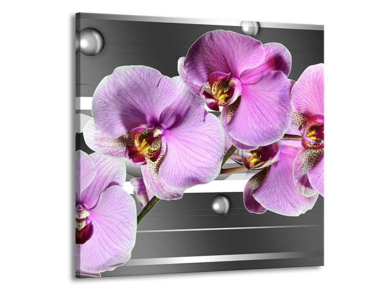 Canvas schilderij Orchidee | Grijs, Paars, Wit | 70x70cm 1Luik