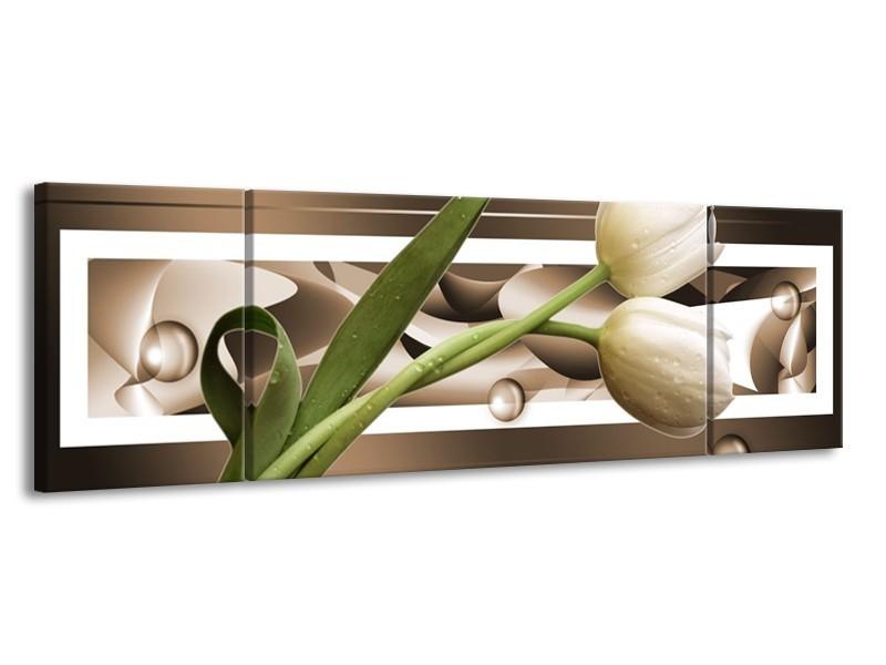 Canvas schilderij Tulp | Bruin, Groen, Wit | 170x50cm 3Luik
