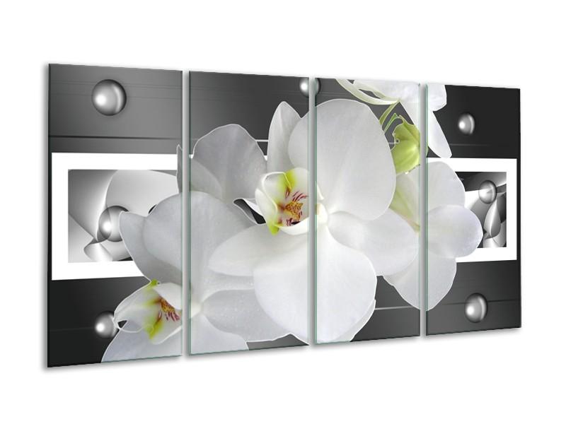 Canvas schilderij Orchidee | Grijs, Wit | 160x80cm 4Luik