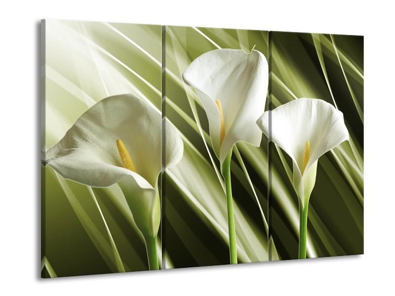 Canvas schilderij Bloem | Groen, Wit | 90x60cm 3Luik