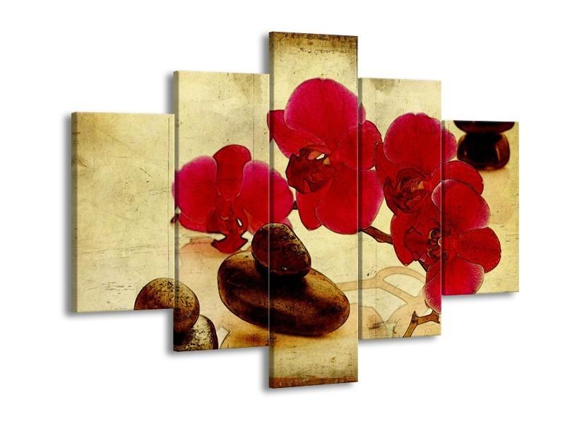 Glas schilderij Orchidee | Rood, Bruin, Geel | 150x105cm 5Luik