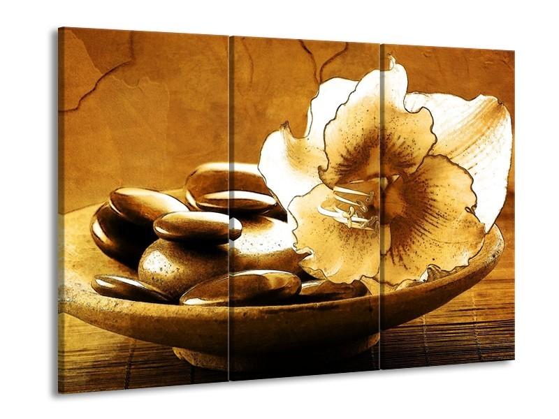 Glas schilderij Bloem | Bruin | 90x60cm 3Luik