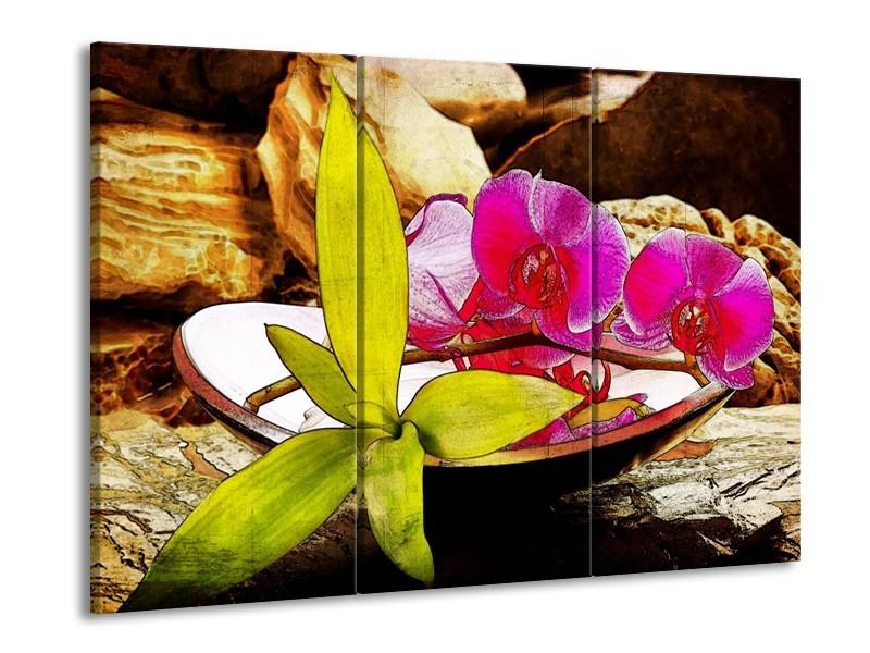 Glas schilderij Orchidee | Paars, Groen, Bruin | 90x60cm 3Luik