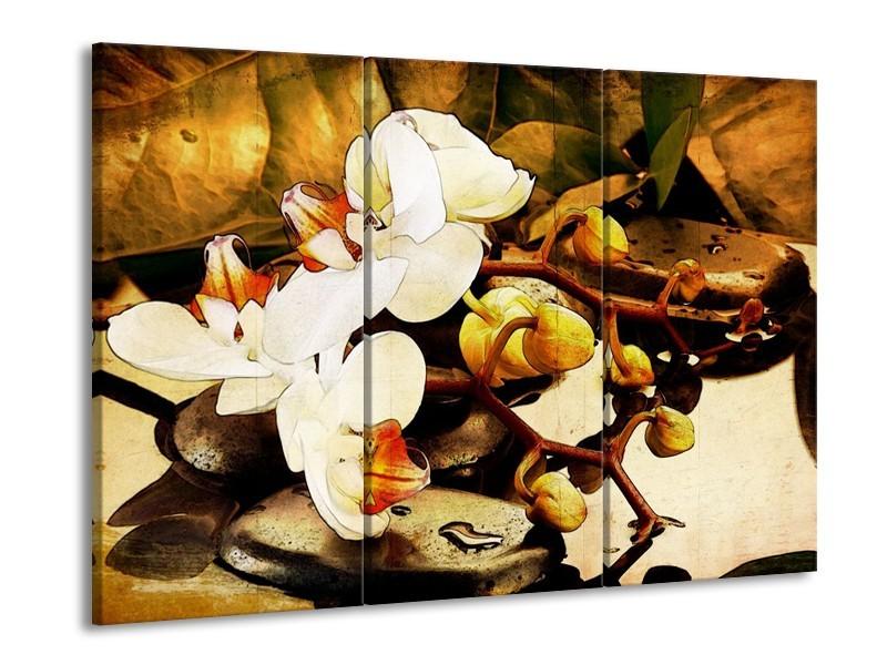Glas schilderij Orchidee | Bruin, Wit, Groen | 90x60cm 3Luik