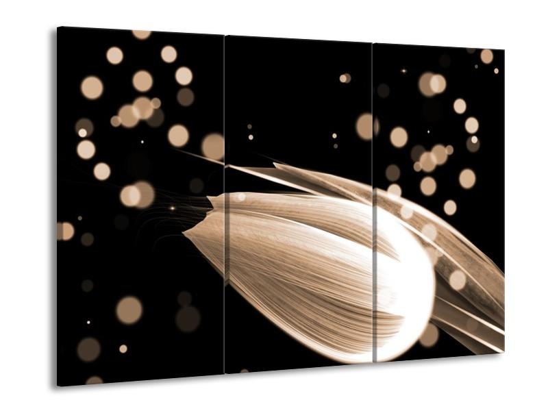 Glas schilderij Tulp | Bruin, Zwart | 90x60cm 3Luik