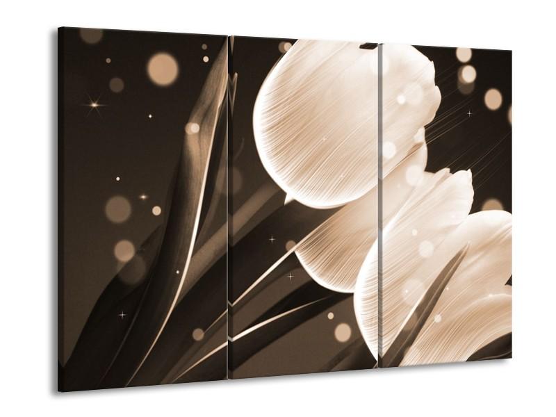 Glas schilderij Tulp | Wit, Grijs | 90x60cm 3Luik