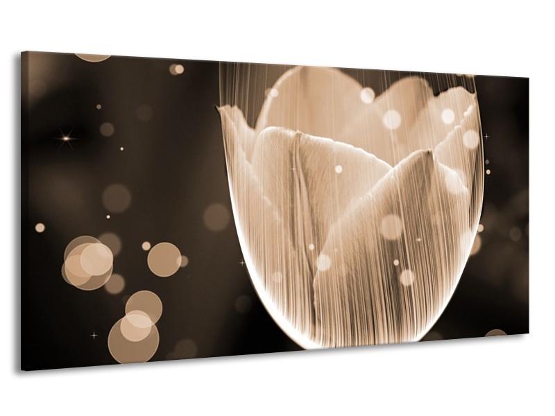 Canvas schilderij Tulp   Grijs, Zwart   170x90cm 1Luik