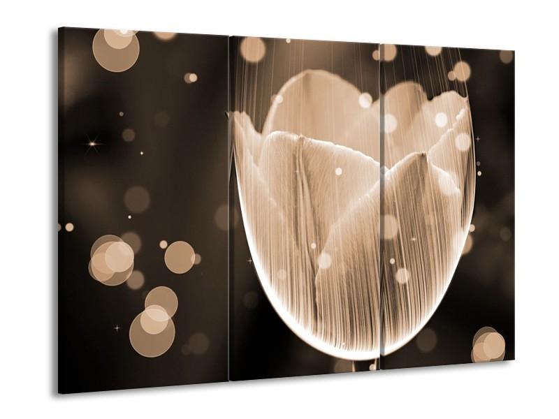 Glas schilderij Tulp | Grijs, Zwart | 90x60cm 3Luik