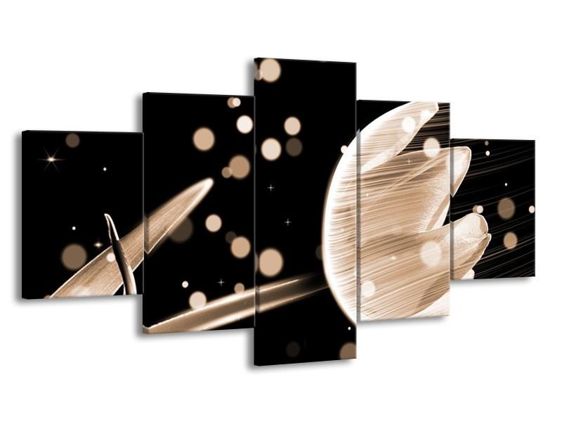 Glas schilderij Tulp | Bruin, Zwart | 150x80cm 5Luik