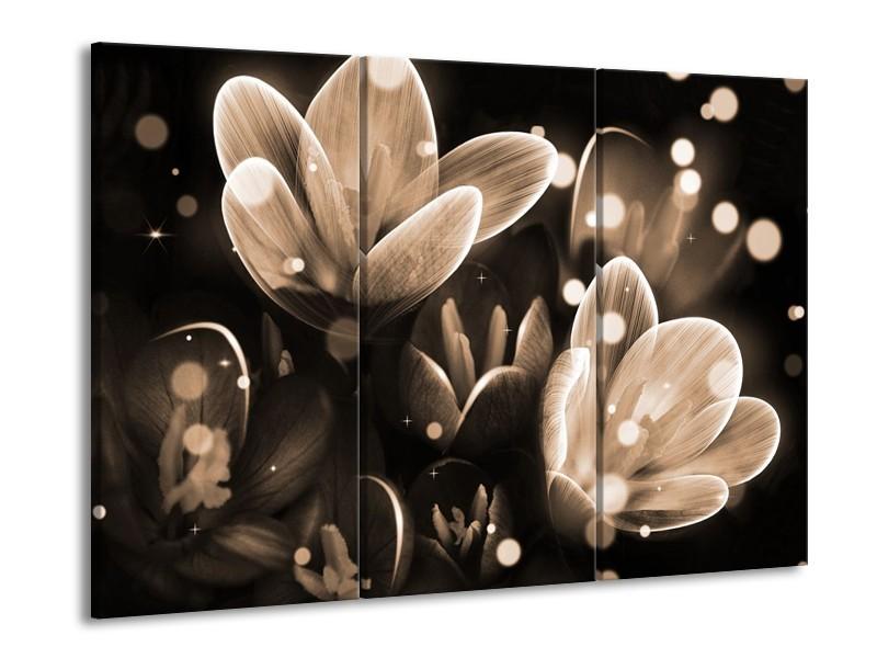 Glas schilderij Bloem | Grijs, Zwart | 90x60cm 3Luik