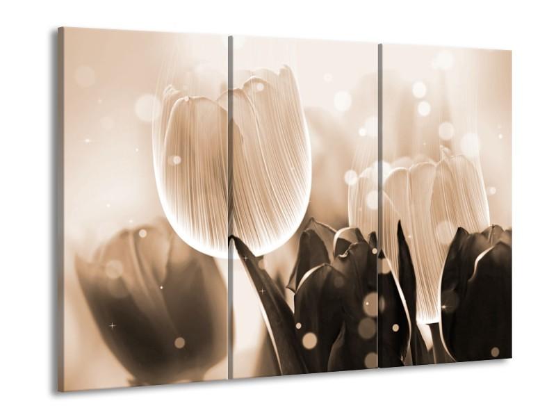 Glas schilderij Tulp | Grijs, Bruin, Zwart | 90x60cm 3Luik