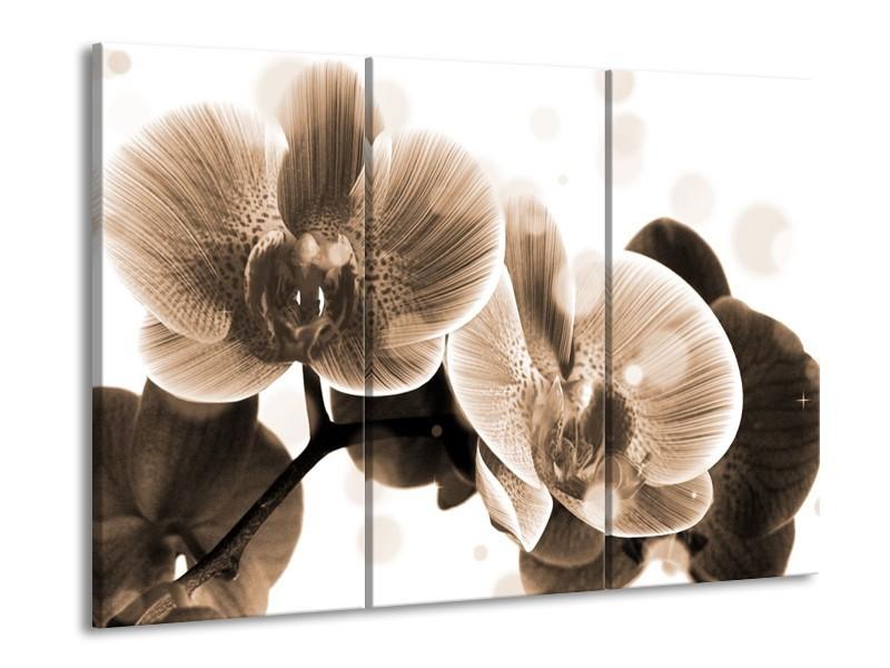 Glas schilderij Orchidee | Grijs, Wit | 90x60cm 3Luik