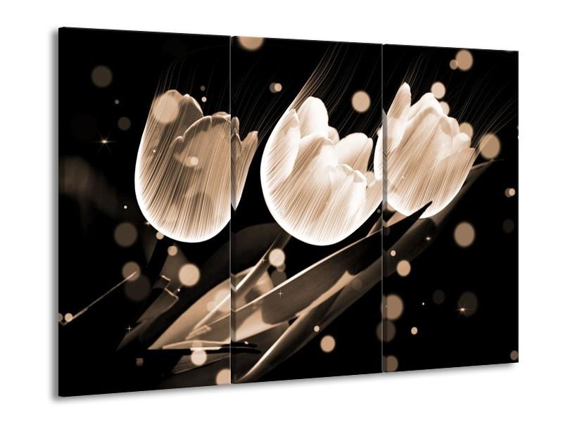 Glas schilderij Tulp | Wit, Zwart, Grijs | 90x60cm 3Luik