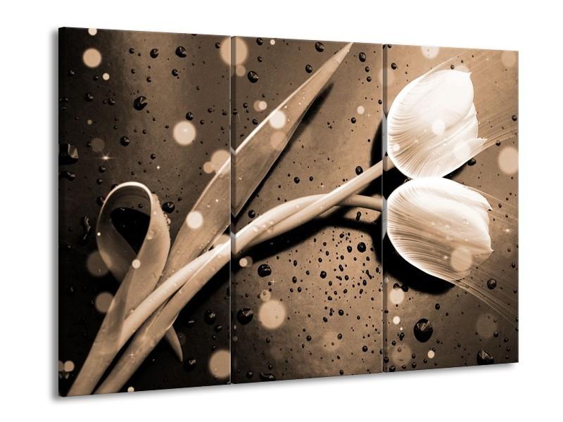 Glas schilderij Tulp | Grijs, Wit | 90x60cm 3Luik
