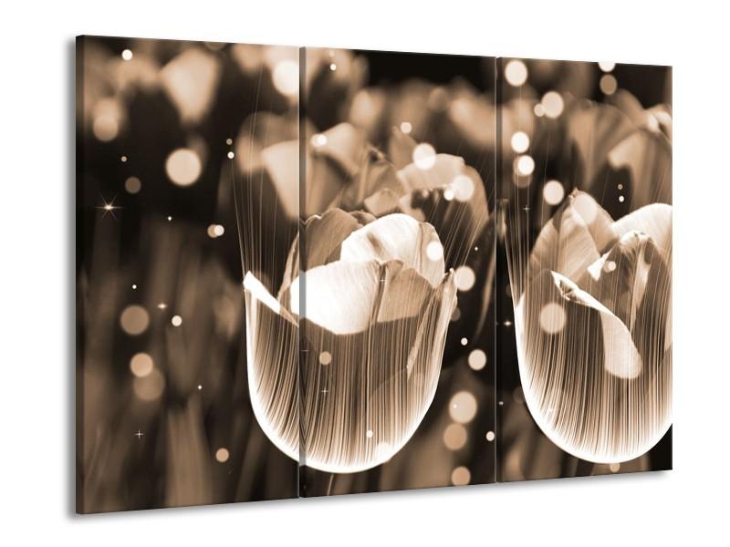 Glas schilderij Tulp | Grijs | 90x60cm 3Luik