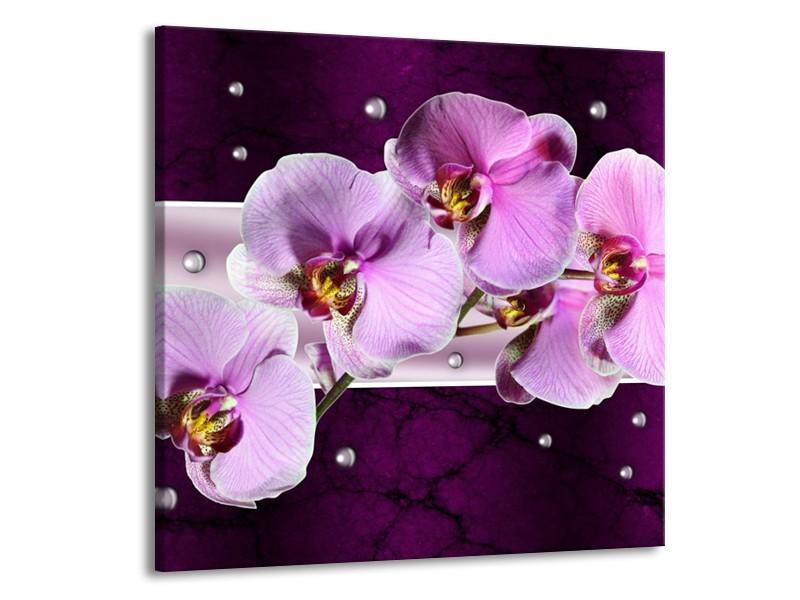 Canvas schilderij Orchidee   Paars, Wit   70x70cm 1Luik