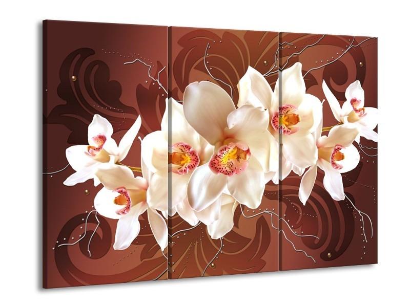 Glas schilderij Orchidee | Bruin, Crème | 90x60cm 3Luik
