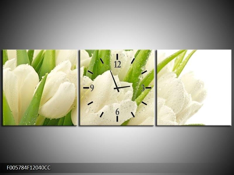 Klok schilderij Tulpen   Wit, Groen   120x40cm 3Luik