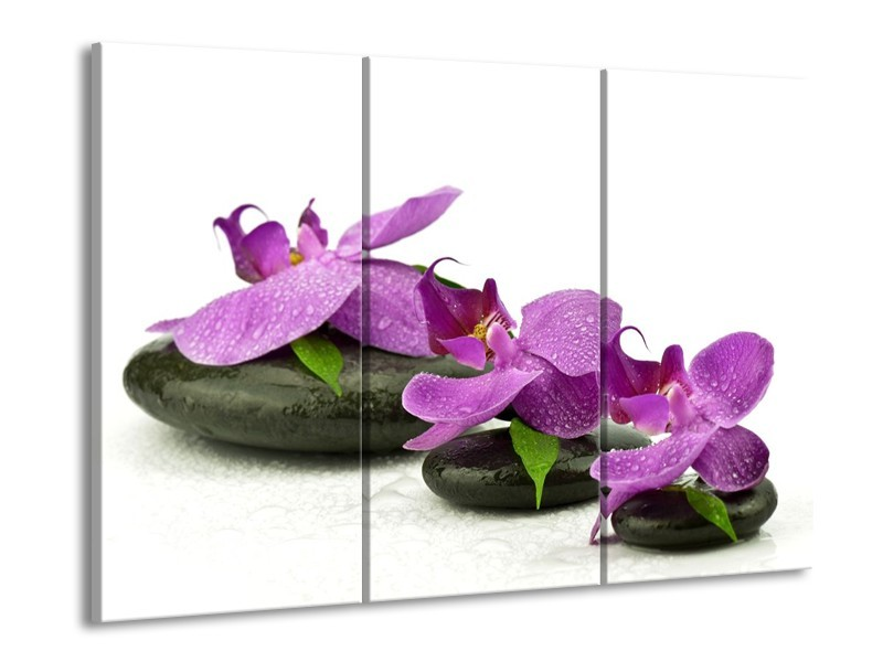Glas schilderij Orchidee | Paars, Wit | 90x60cm 3Luik